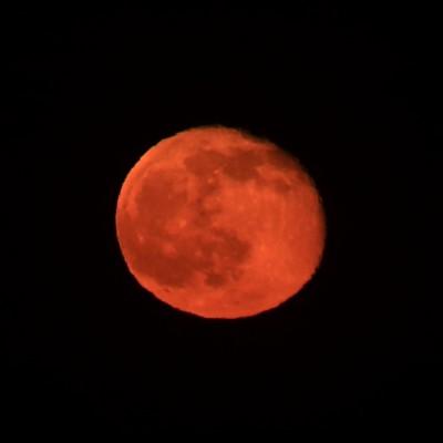 御宿「月」