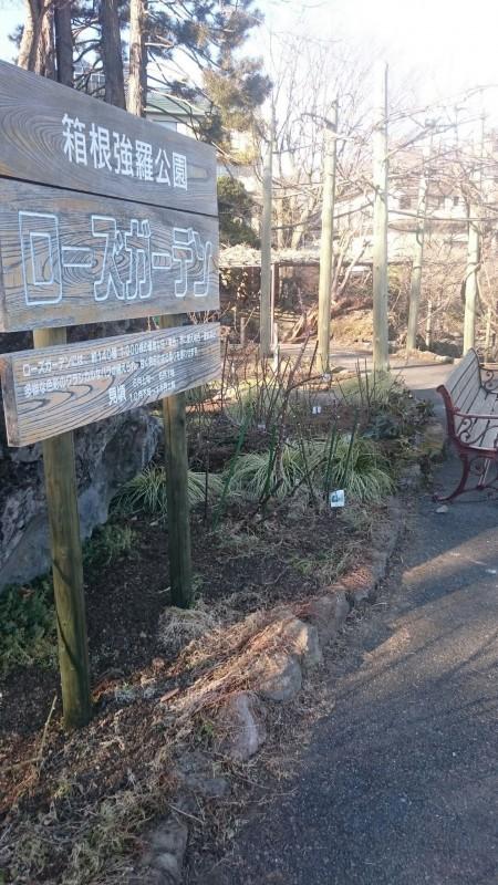 強羅公園①