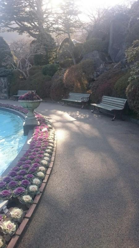 強羅公園④