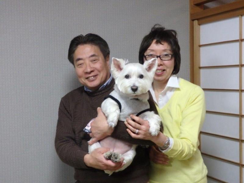 2017.3.12 麻埜様 マリアちゃん (ウェスティ)