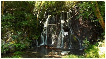 ≪画像⑩≫玉簾の滝1