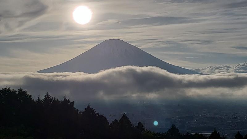 20190625_宮城野_photo1